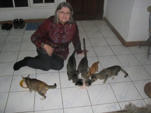 Dr. Birute at the OFI Jakarta office with the mother cat and her offspring who adopted us
